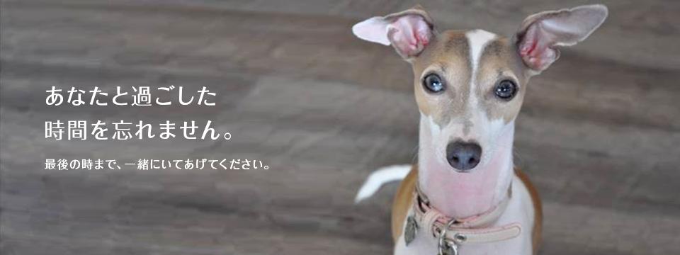 沖縄県動物愛護管理センター